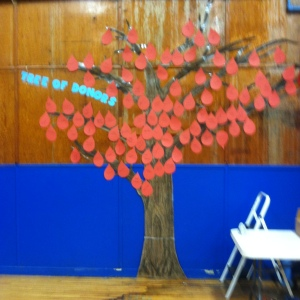 Image of the Tree of Donors
